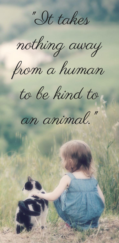 055ec92f94a4c5c61bcd1da2b59fdecc-animal-rescue-quotes-animal ...